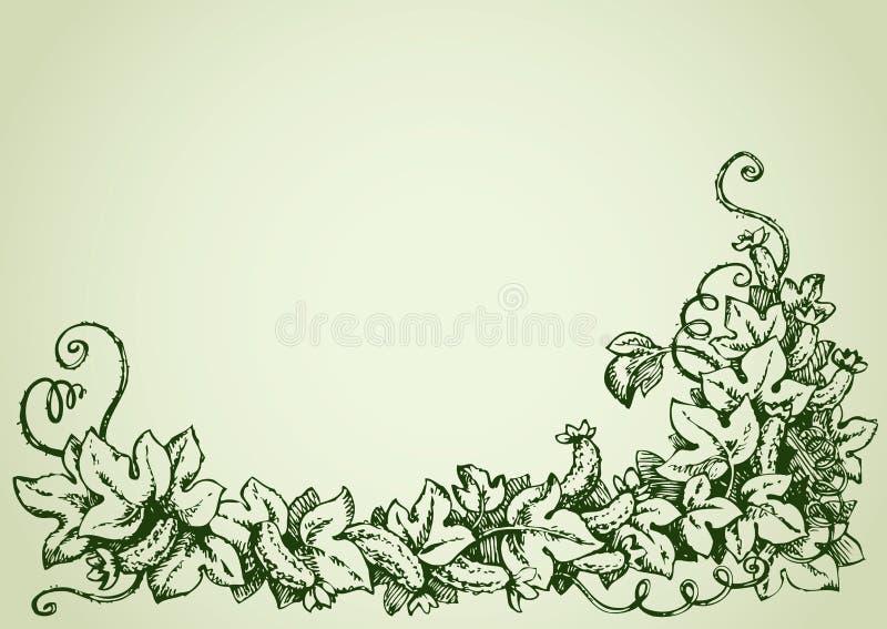 Ogórkowy winograd rysuje tła trawy kwiecistego wektora royalty ilustracja