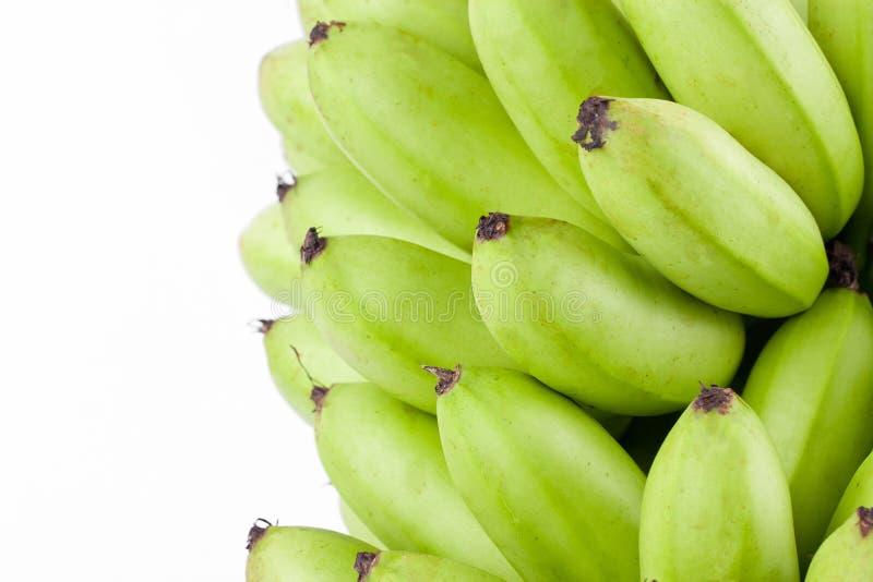 Oganic绿化在白色被隔绝的背景健康Pisang Mas香蕉果子食物的香蕉 库存照片