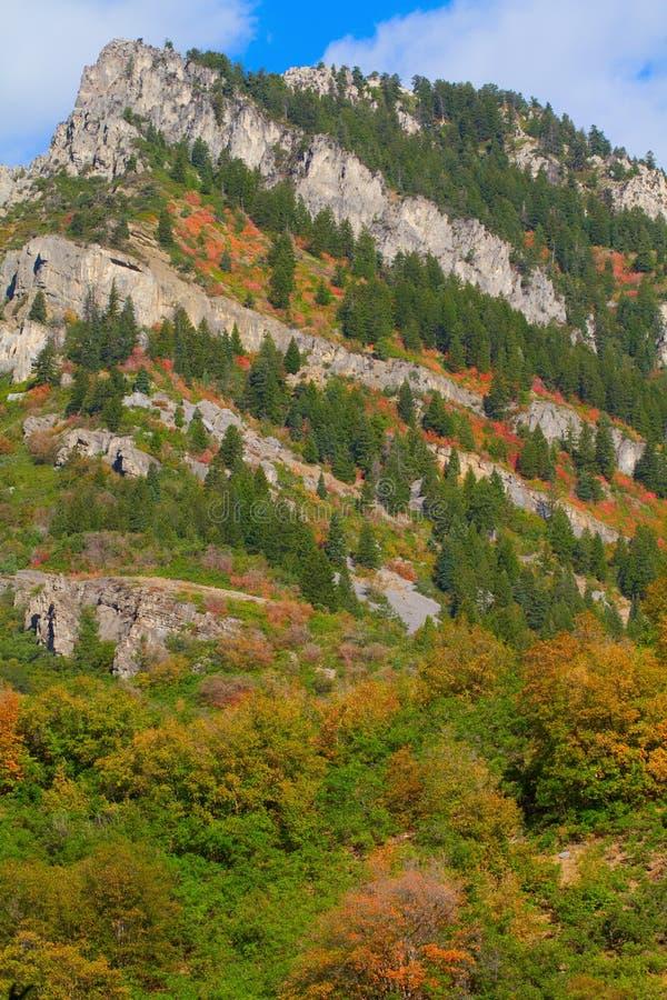 Ogden River Valley photos libres de droits