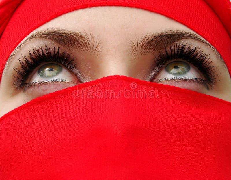 ogen stock foto
