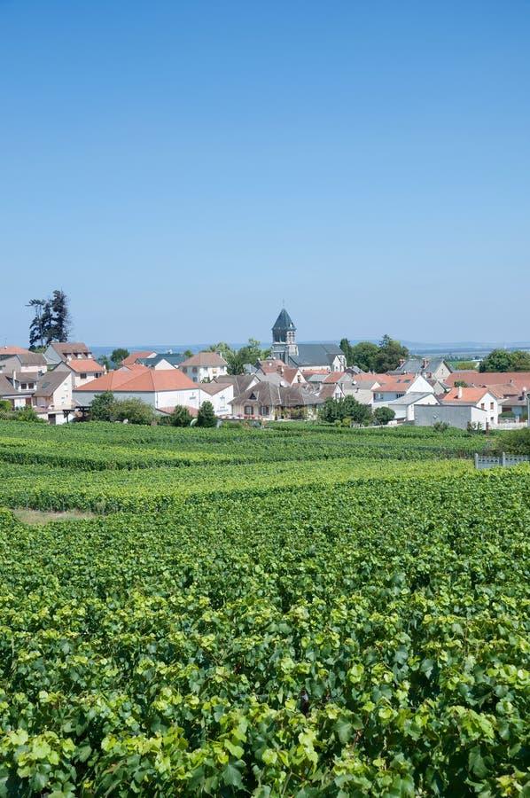 Oger Champagne Region, Frankrike royaltyfri foto