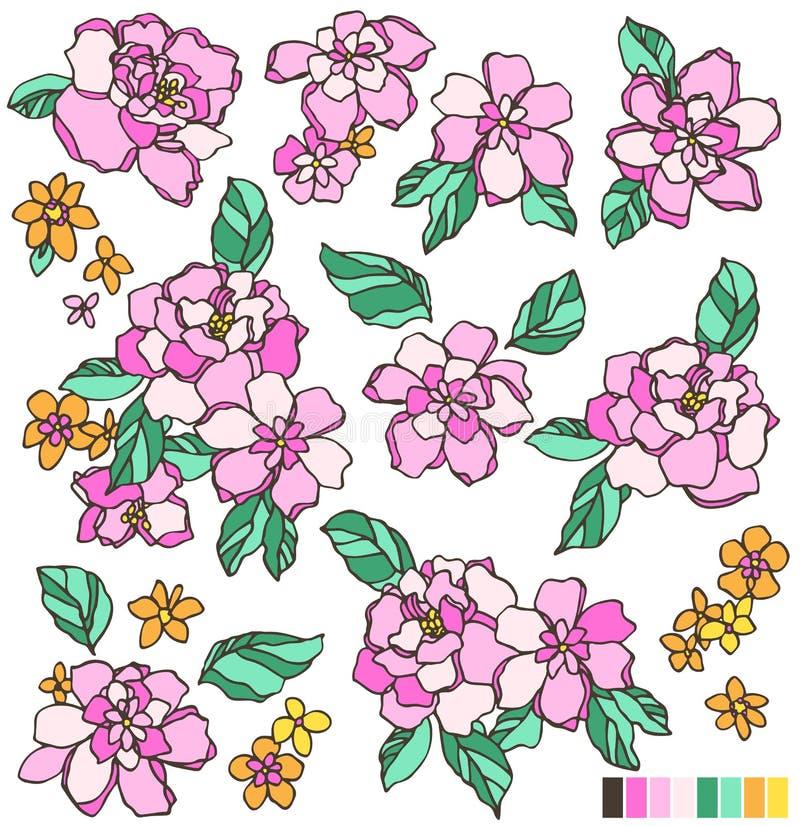 Oggetto dell'illustrazione del fiore royalty illustrazione gratis