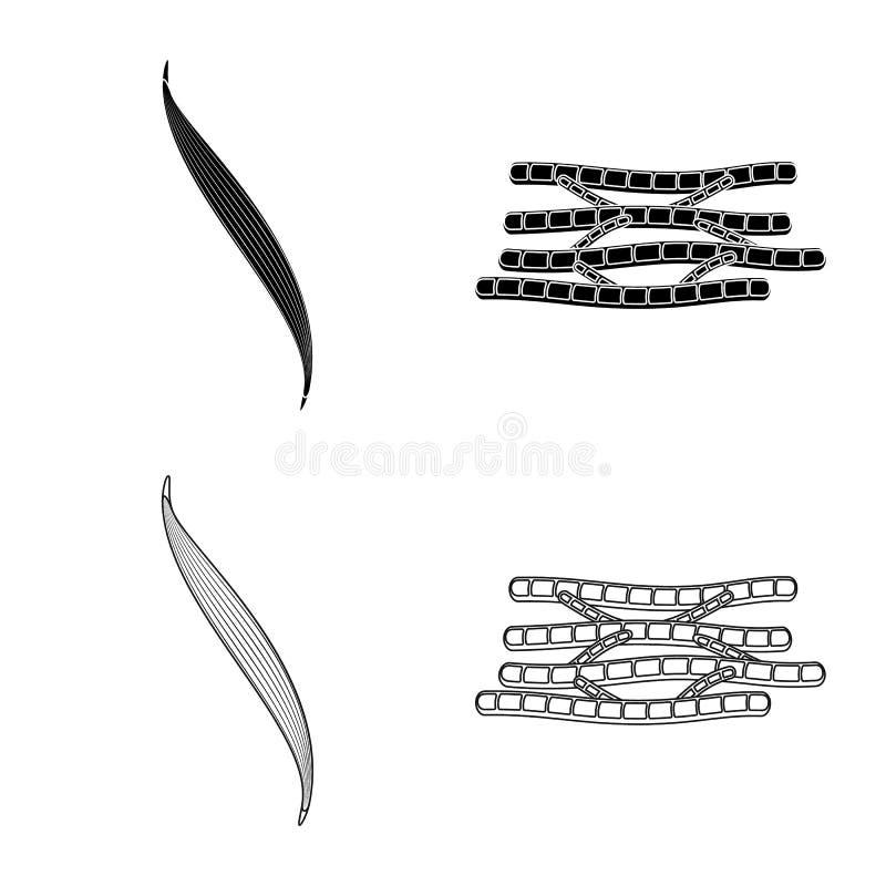 Oggetto isolato di fibra e del logo muscolare Metta del simbolo di riserva del corpo e della fibra per il web royalty illustrazione gratis