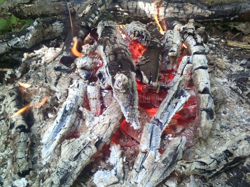 Ogień drewna zdjęcia stock