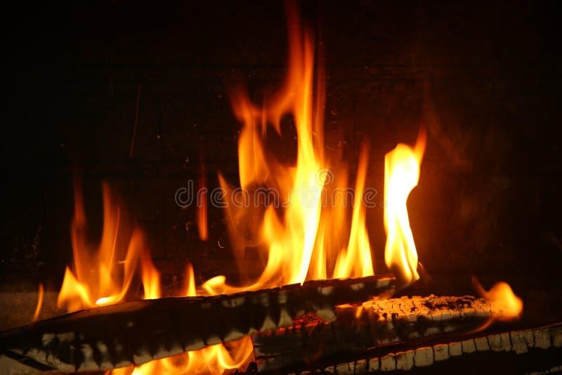 Ogień drewno obrazy royalty free