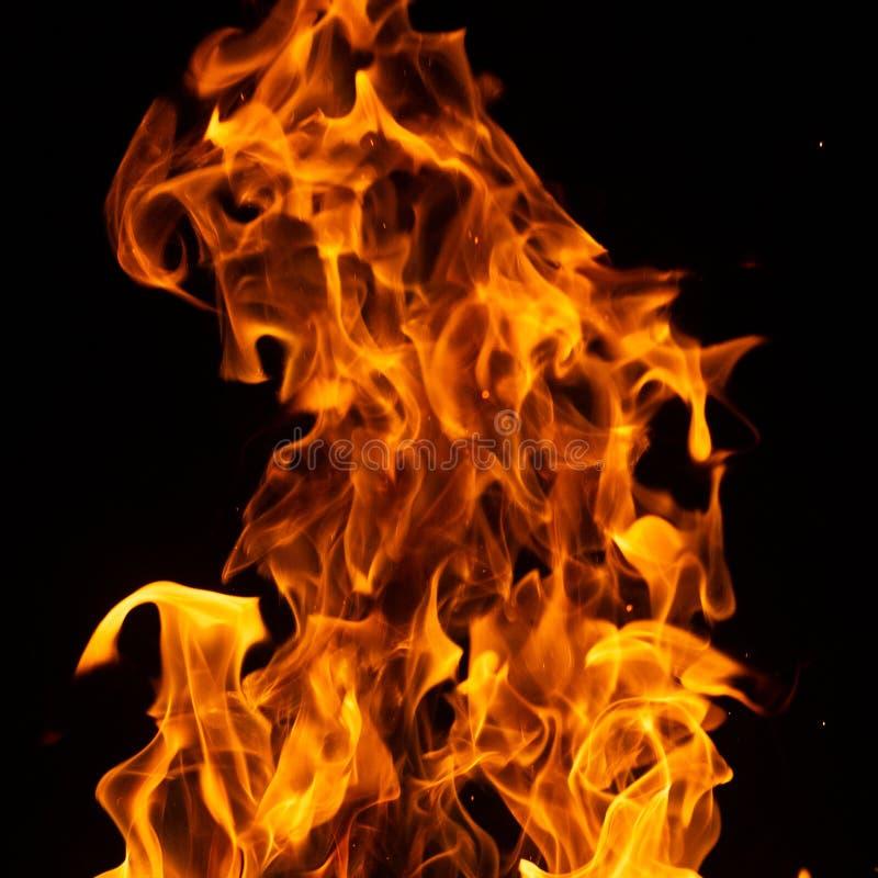 Ogień na czarnym tle zdjęcie royalty free