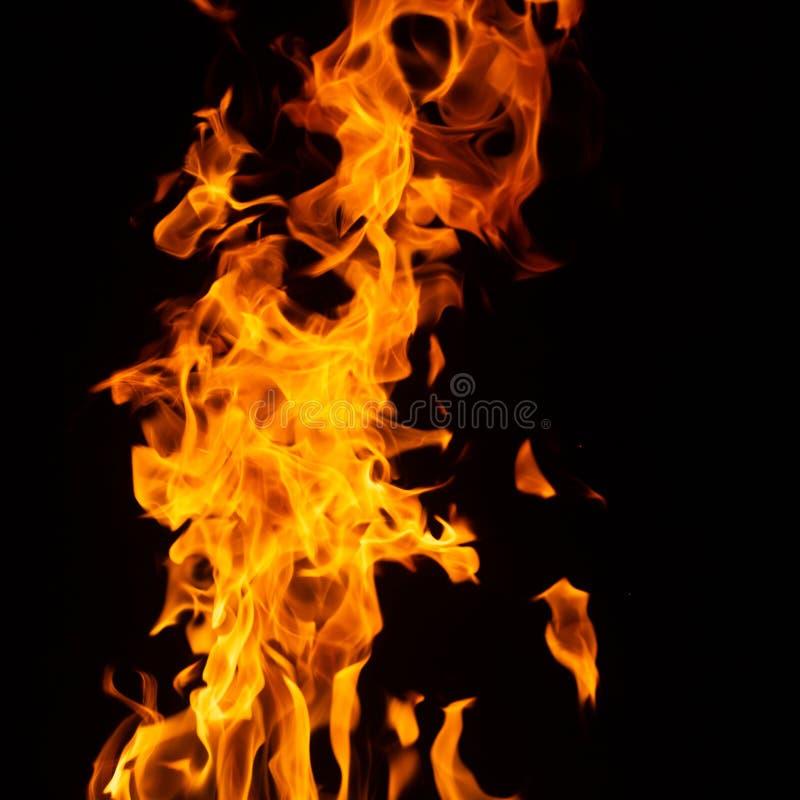 Ogień na czarnym tle fotografia stock