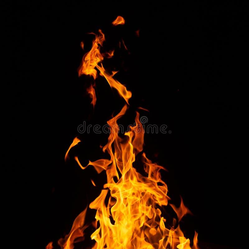 Ogień na czarnym tle obraz royalty free