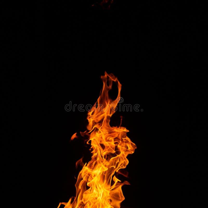 Ogień na czarnym tle fotografia royalty free