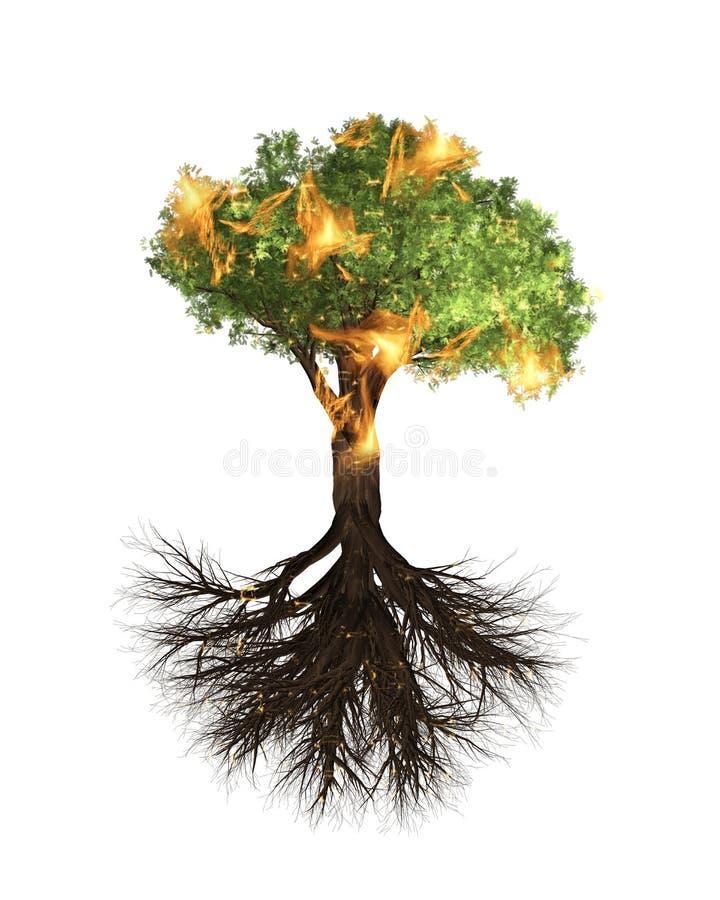Ogień, płonący drzewa i korzenie, Zielony Forrest drzewa tło royalty ilustracja