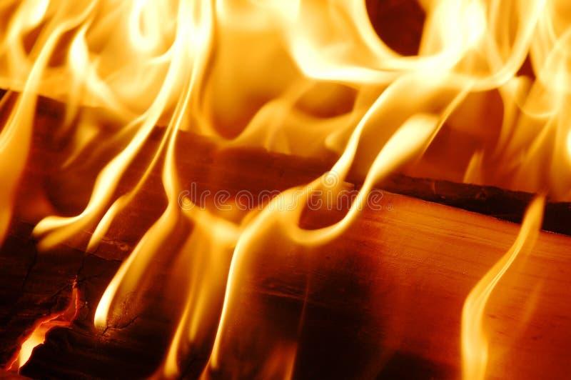 ogień płonie. zdjęcie royalty free