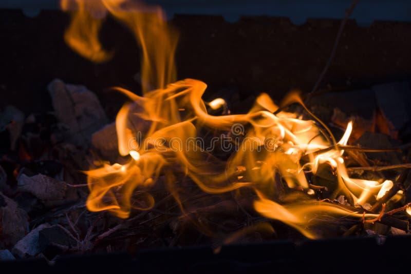 ogień robi zdjęcia royalty free