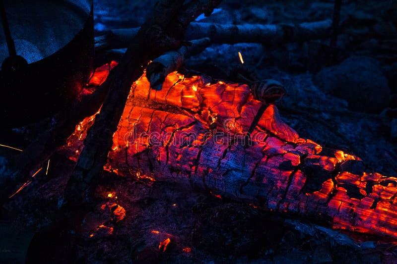 Ogień w lesie obrazy royalty free