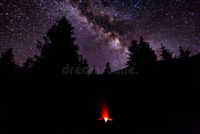 Ogień w obozie w lesie pod gwiaździstym niebem Milky sposób obraz stock