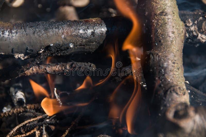 Ogień w obozie ognisko obrazy royalty free