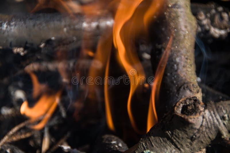 Ogień w obozie ognisko zdjęcia stock