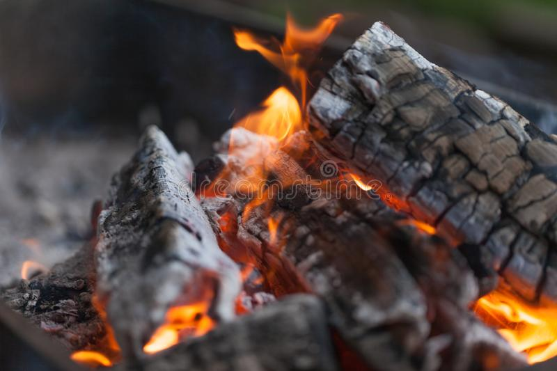 Ogień z węglami drzewnymi płonący drewna Makro- Żyje płomienie z dymem Drewno z płomieniem dla grilla i kulinarnego bbq jasny kol obraz royalty free