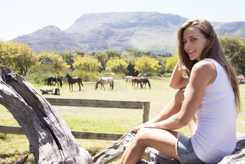 Oglądać out dla koni zdjęcie stock