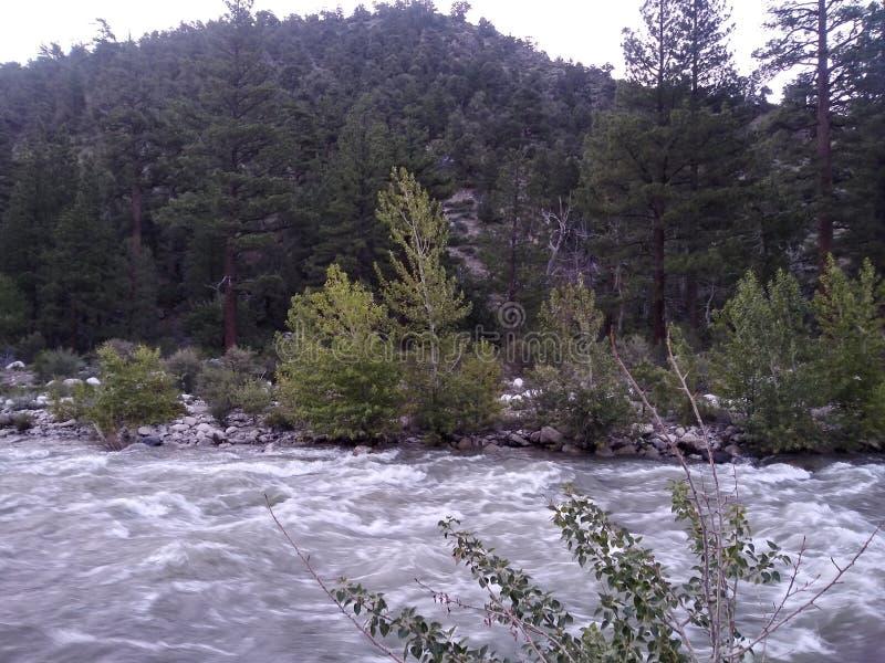 Oglądający rzekę biegającą obok obrazy stock