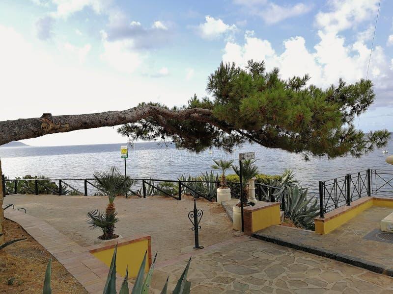 Ogliastro小游艇船坞-水平的杉木 免版税图库摄影