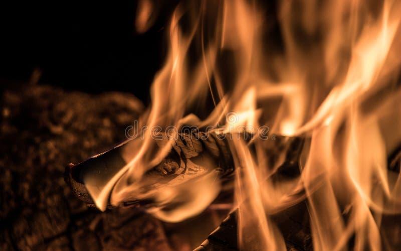 ognisko zdjęcie stock