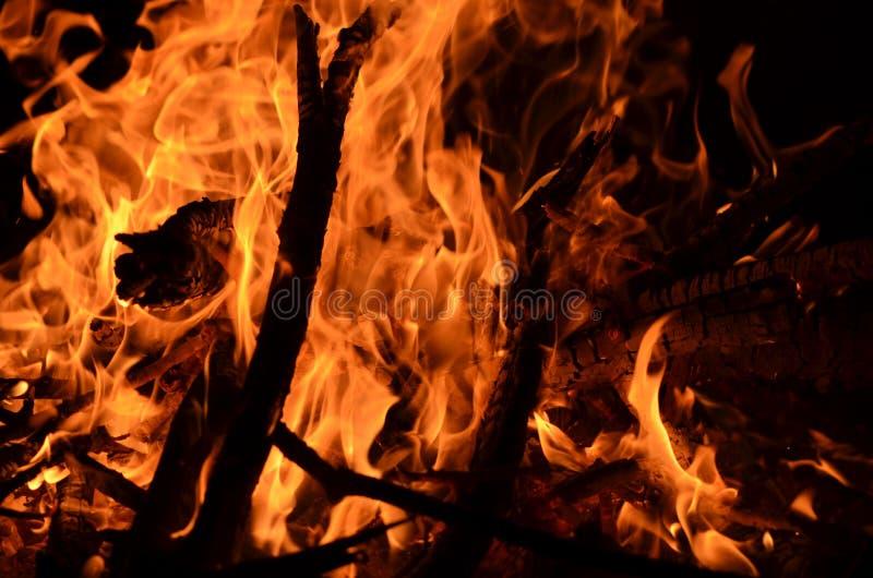 Ognisko noc zdjęcie royalty free