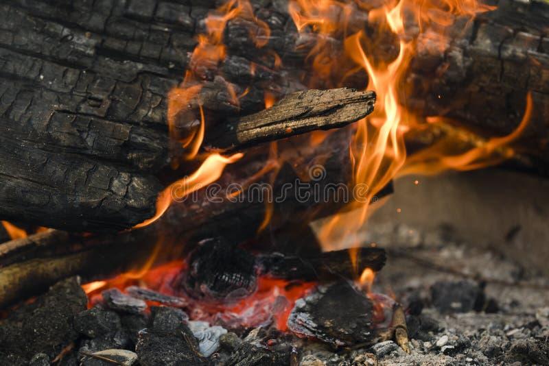 Ognisko z pomarańcze węglami i płomieniami obrazy stock