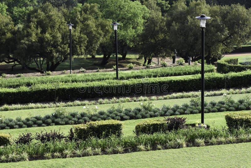 Ogródów tarasy Przy Zrzeszeniowymi budynkami Południowa Afryka fotografia royalty free
