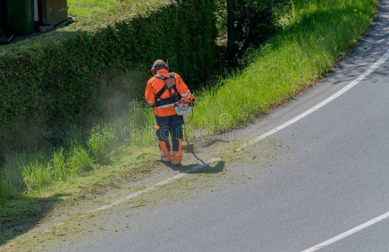 Ogräs för klipp för stadsunderhållsarbetare på vägskuldran med en strimmer arkivfoto