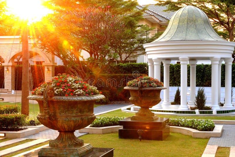 Ogród zdjęcia royalty free