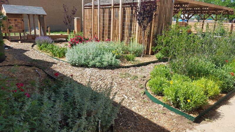 Ogród zdjęcie royalty free