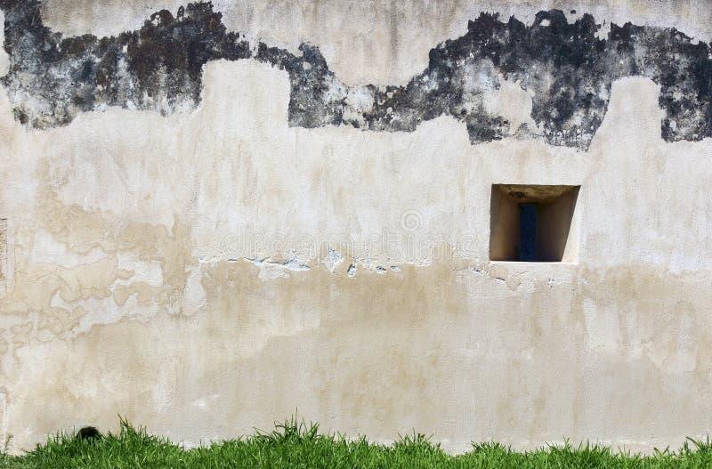 ogród blokowa ściana zdjęcia stock