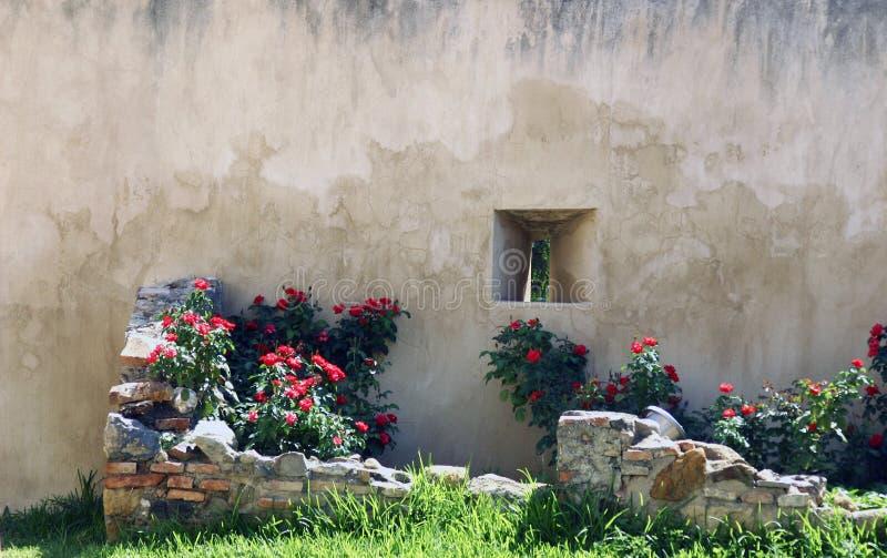 ogród blokowa ściana zdjęcie royalty free