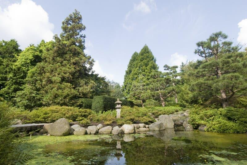 Ogród Botaniczny, Hamburg, Niemcy 03 zdjęcie royalty free