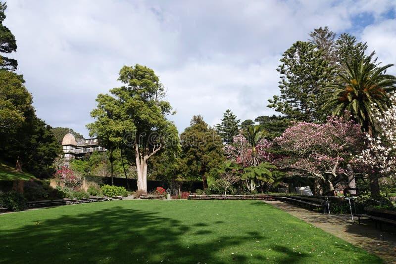 Ogród Botaniczny i domek na drzewie Wellington, Nowa Zelandia obraz stock