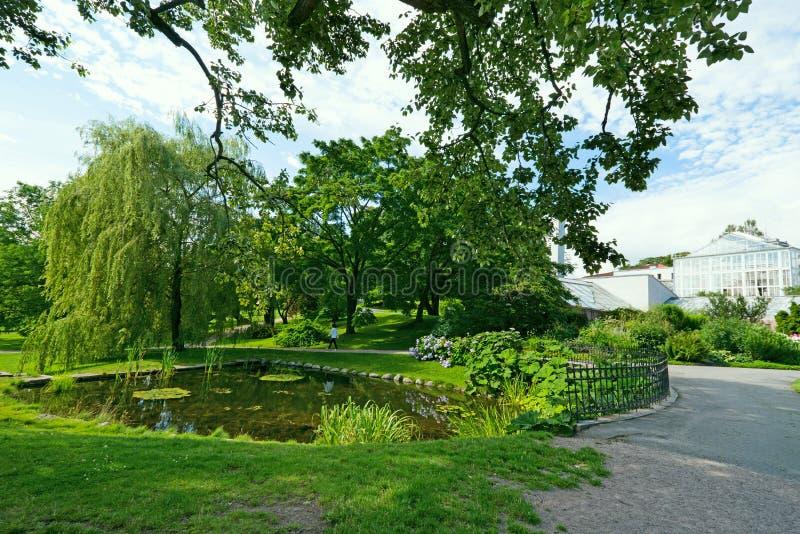 ogród botaniczny jezioro zdjęcie stock