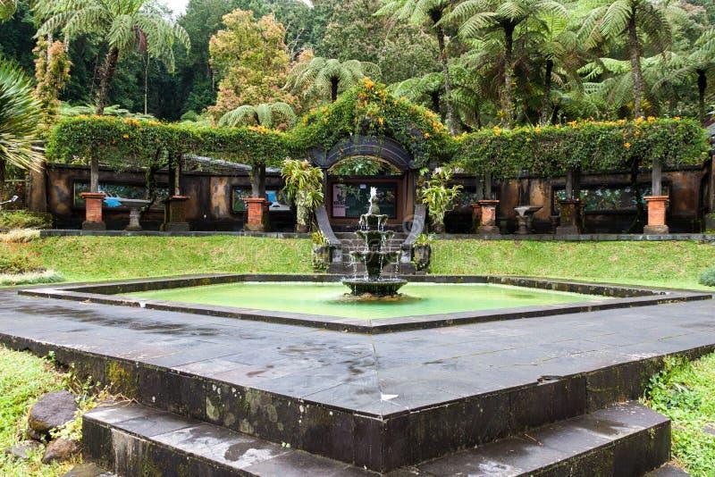 Ogród botaniczny Kebun Raya Bali, Bali zdjęcia royalty free