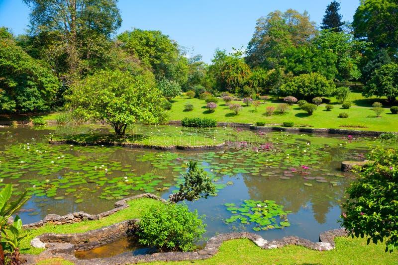 ogród botaniczny krajobraz obrazy stock