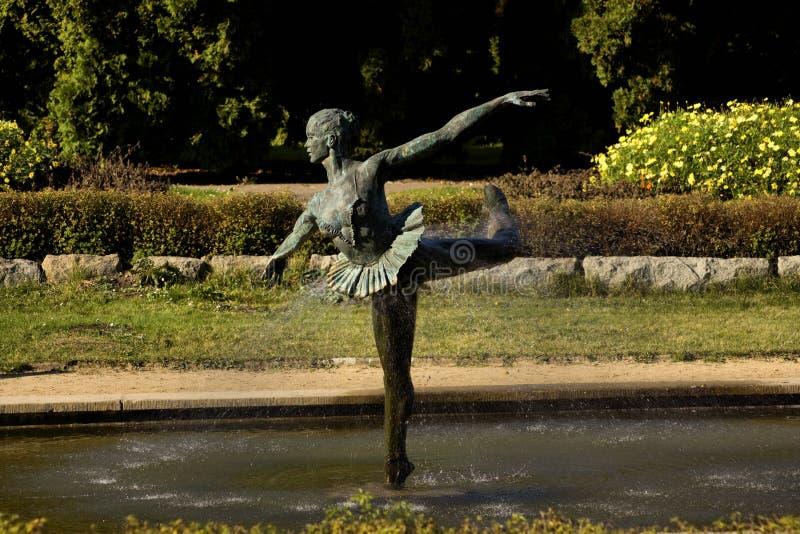 ogród botaniczny Poznan zdjęcia royalty free