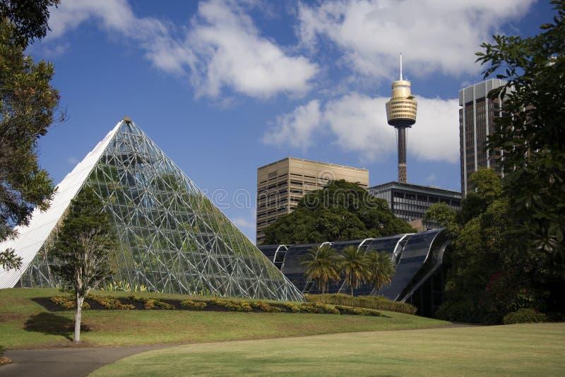 Ogród Botaniczny - Sydney - Australia zdjęcie stock