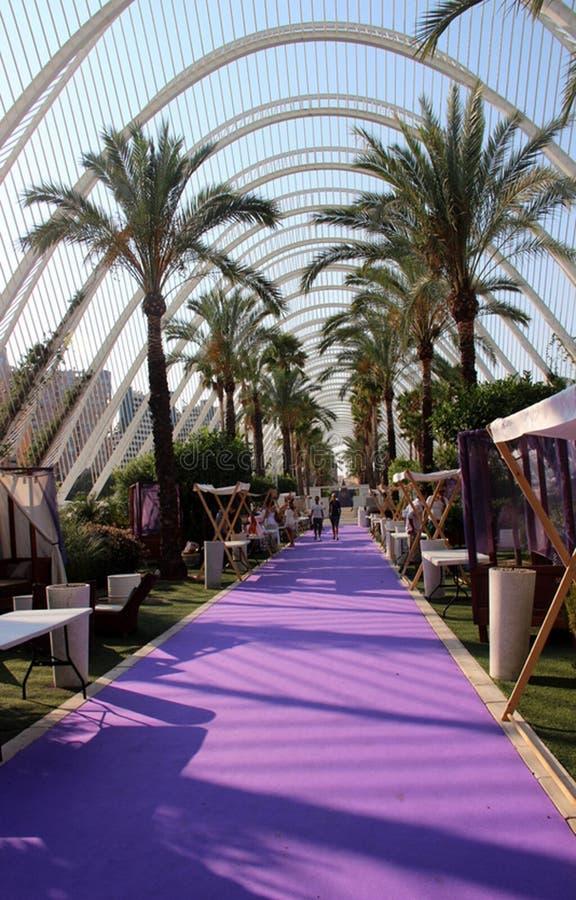 Ogród botaniczny, Walencja, miasto nauki i sztuki, Hiszpania zdjęcie royalty free