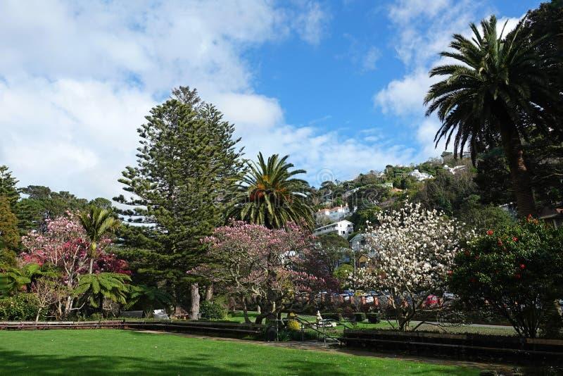 Ogród Botaniczny Wellington, Nowa Zelandia zdjęcie stock