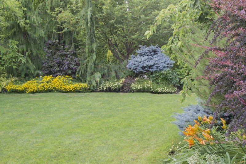 Download Ogród bujny obraz stock. Obraz złożonej z ogród, przypadkowy - 41952469