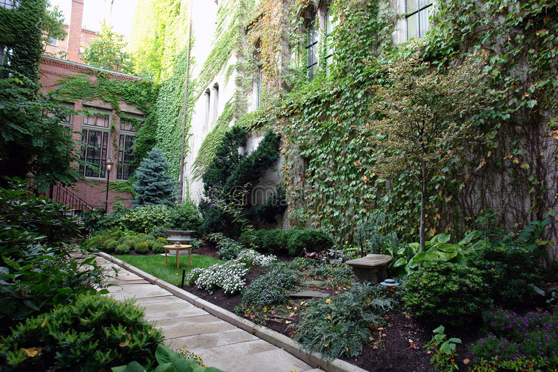 ogród bujny bostonu fotografia royalty free