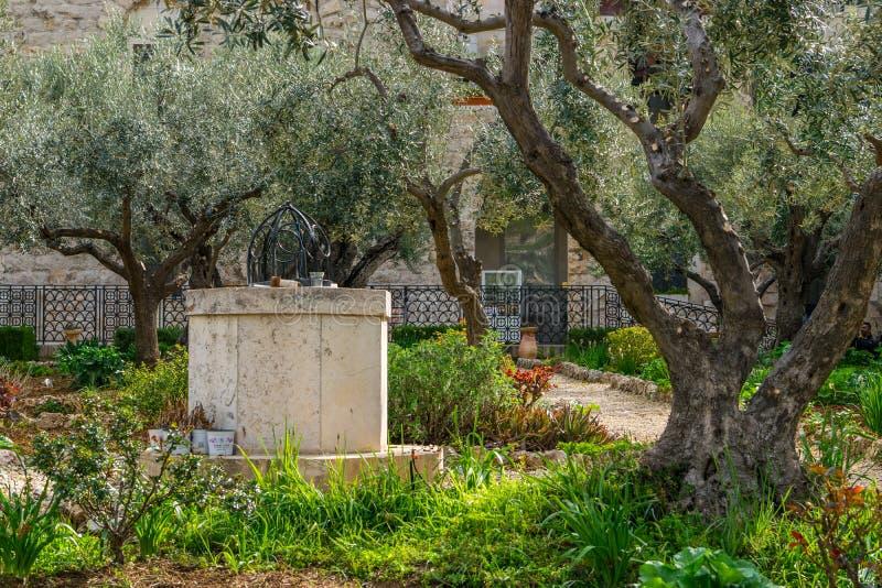 Ogród Gethsemane - well fotografia stock
