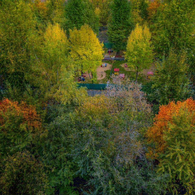 Ogród moskiewski w budynku mieszkalnym w Moskwie zdjęcie royalty free