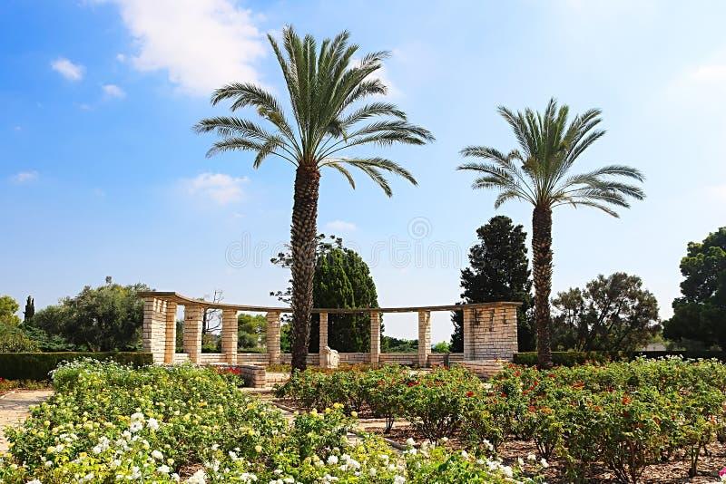 Ogród różany, palmy i słońce, osiągamy, Parkowy Ramat Hanadiv, Izrael obrazy stock