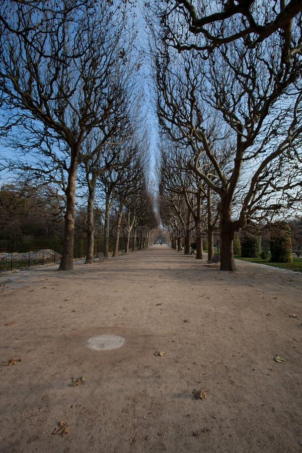 Ogród rośliny (jardin des plantes) obrazy royalty free