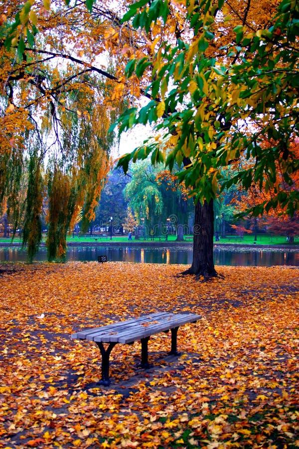 ogród społeczeństwa bostonu zdjęcie stock