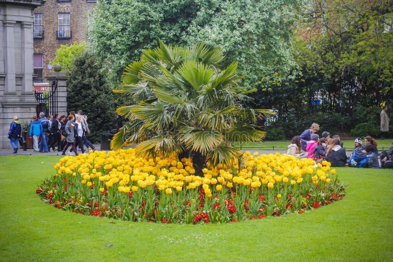 Ogród St Stephens zieleń, Dublin, Irlandia zdjęcia royalty free